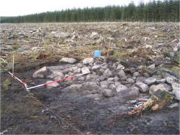 Cairn 1 with overburden removed