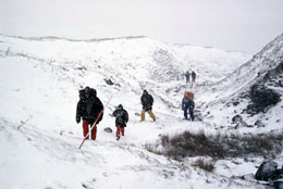 Volunteers Survey in the snow