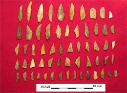 Fig. 17: Mesolithic flint assemblage, Daer Valley